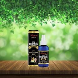 Liquid Propolis Extract, Pure Propolis, Alcohol Free, 30 ml